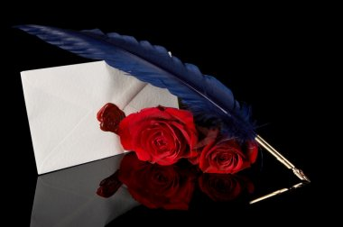 Blue feather and red roses