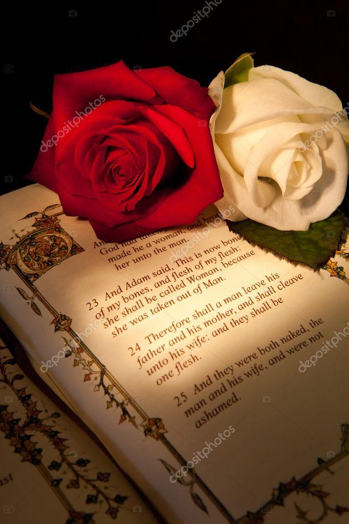 Matrimonio Y Biblia : Anillos de matrimonio en la biblia fotografías de stock