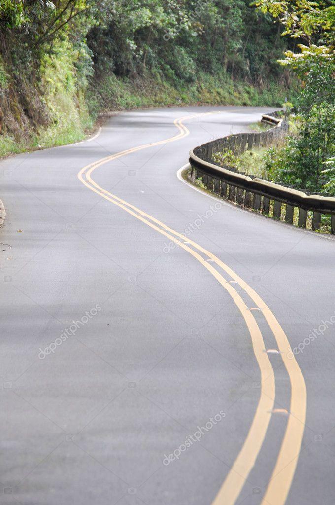 Road to Hana in Maui