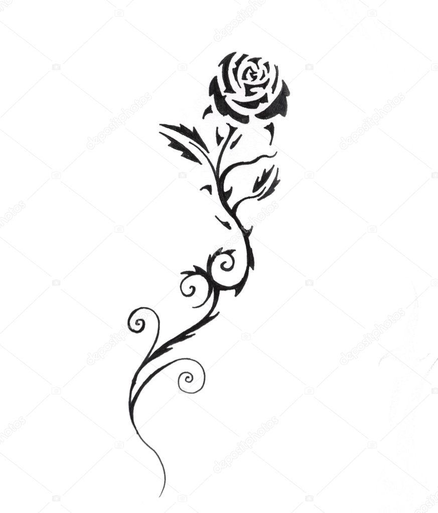 Szkic Sztuka Tatuaż Czarna Róża Zdjęcie Stockowe