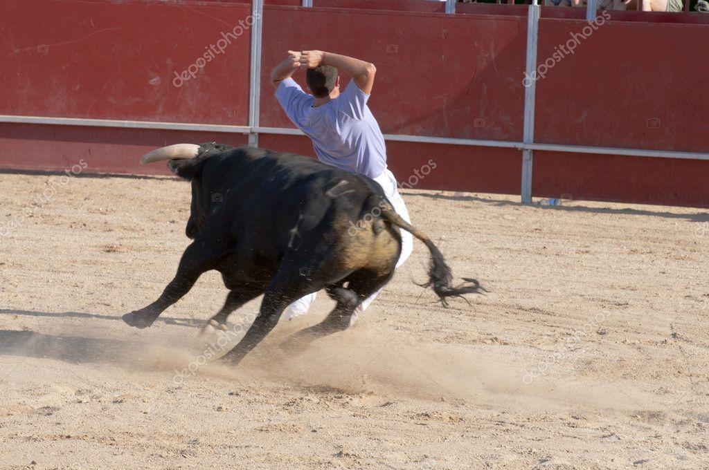 борьба с быком картинки срок годности