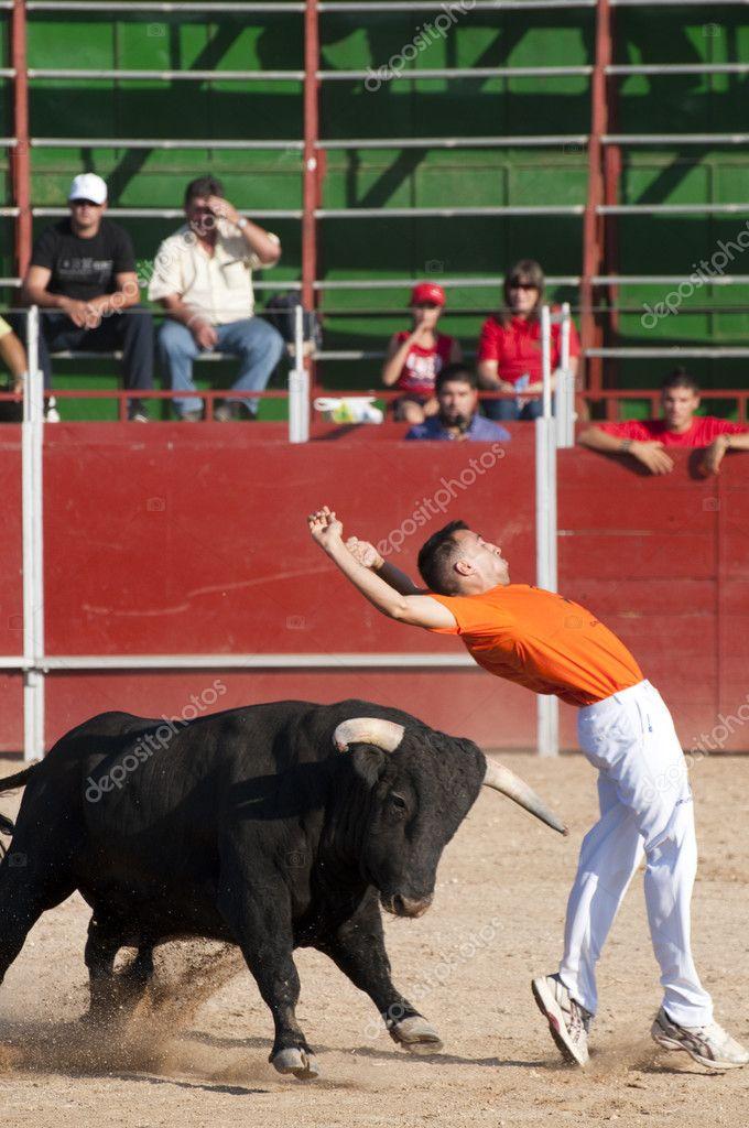 борьба с быком картинки спасибо слова