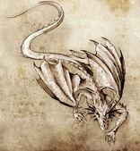 Fotografia schizzo dellarte del tatuaggio, drago moderno