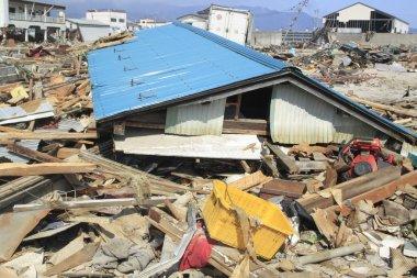Büyük Doğu Japonya depremi