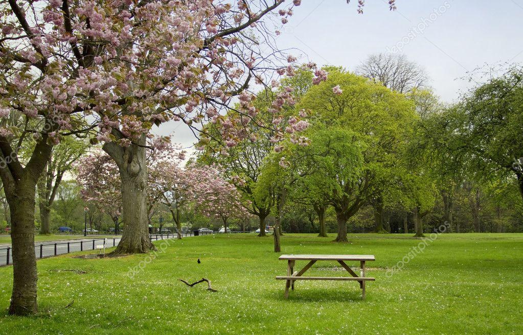Spring in Dublin