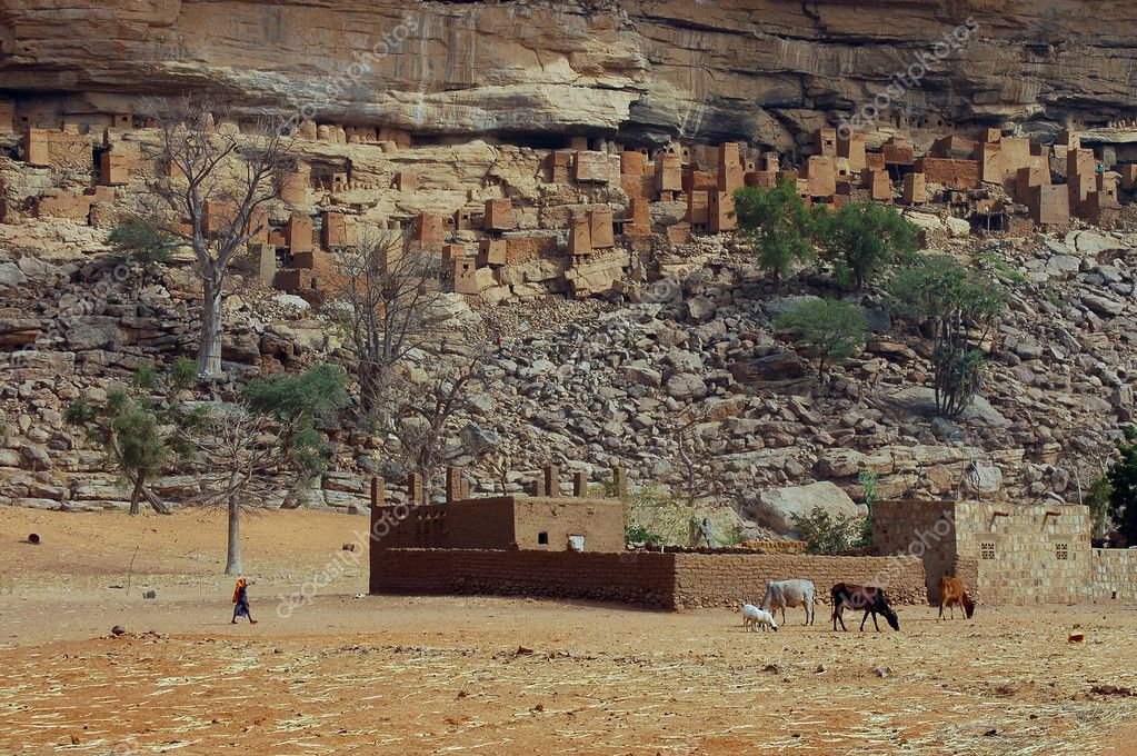 Dogon child and cattle in front of village