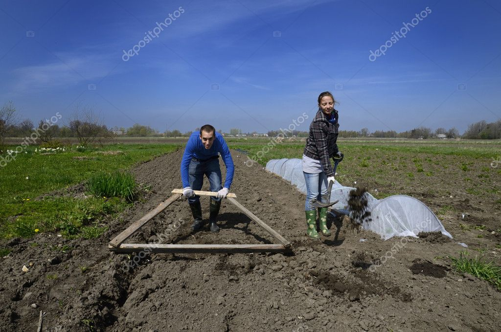 Young man and woman hard working in Latvian farm