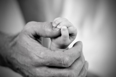 Dad holding baby daughters hand