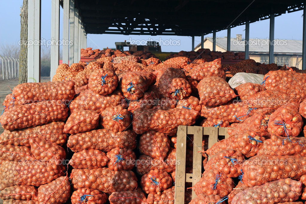 Agricultural Warehouse — Stock Photo © robert_g #9296124