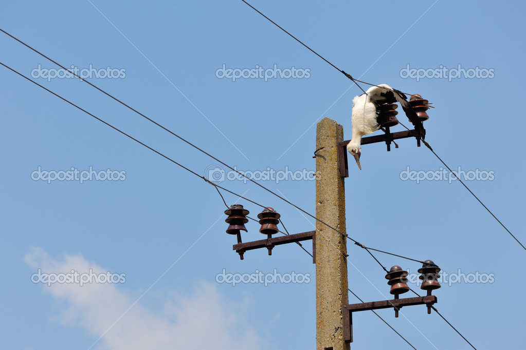 Electricity Wires - otoring.com