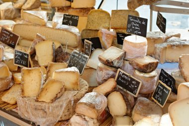 Random French cheese at market of Provence