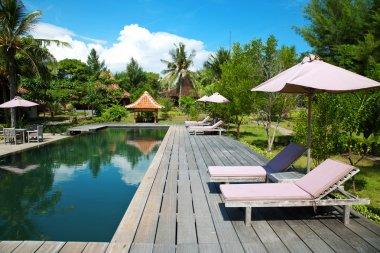 Swimming pool at an eco resort