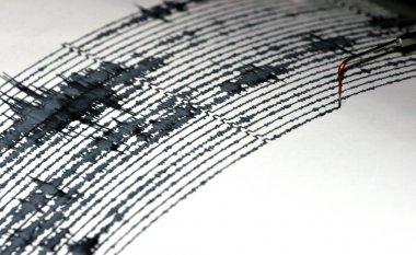 Seismogram