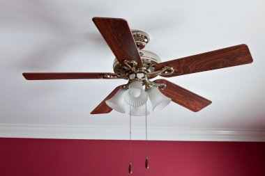 Big Fan with lamp