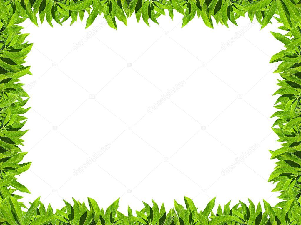 Natural green leaf frame — Stock Photo © Exsodus #10051931