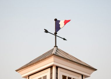 The Old weather vane on roof top