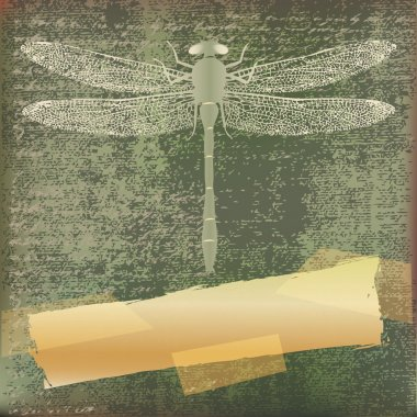 Dragonfly Background