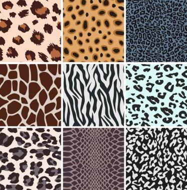 Seamless animal skin watch