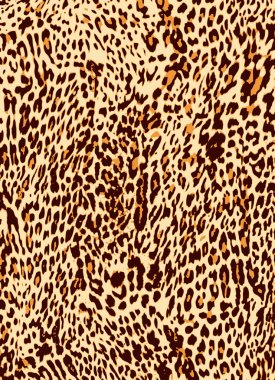 Abstract animal skin texture