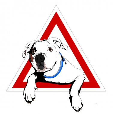 American bulldog on board