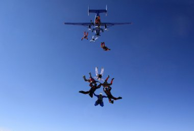 Group of skydivers exit plane
