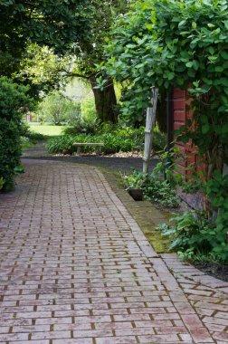 Paved garden path wit hshrubs