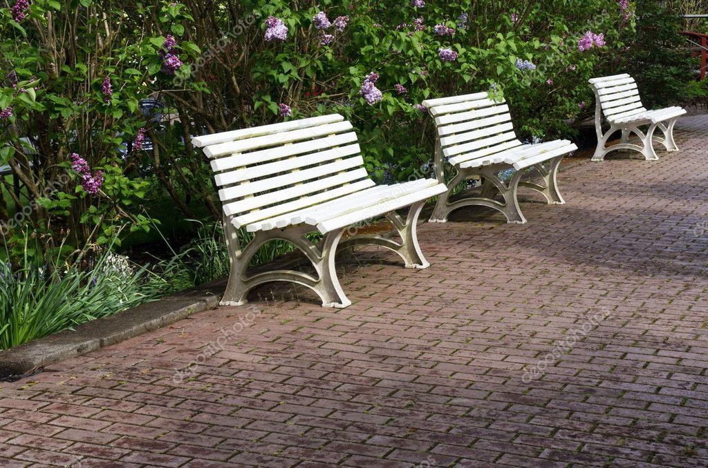 drei weiße Gartenbänke auf einen gepflasterten Weg — Stockfoto ...