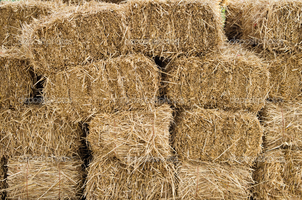 Hay bales stacked and drying