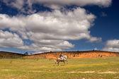 jízda na koni na louce