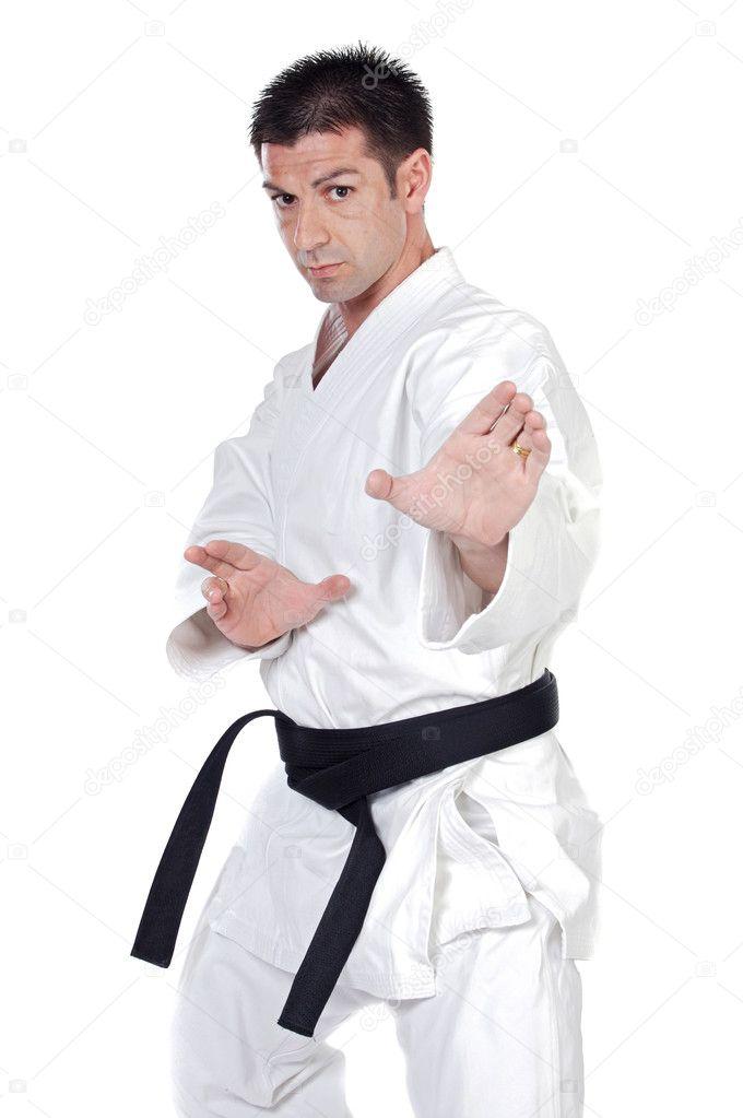 Pictures Martial Arts Stances Martial Arts Stance Stock Photo C Gelpi 9436728