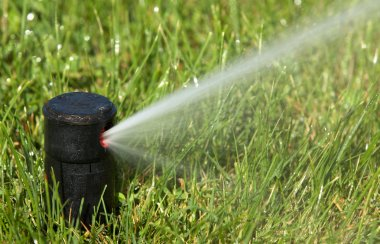 Sprinkler watering