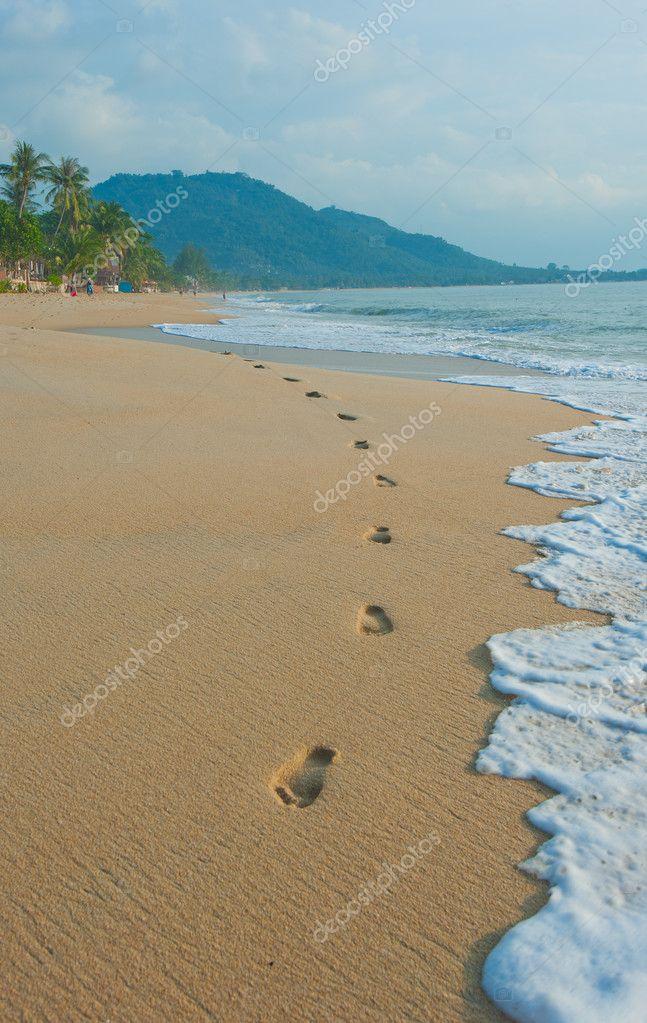 Footprints in a tropical beach
