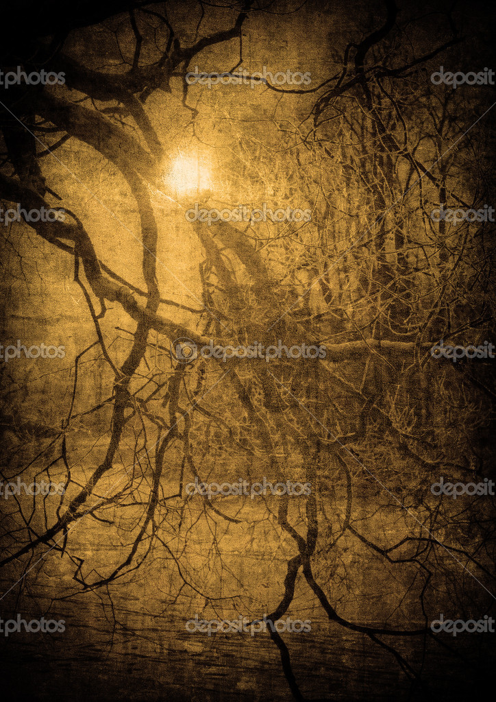 Фотообои Grunge image of dark forest, perfect halloween background