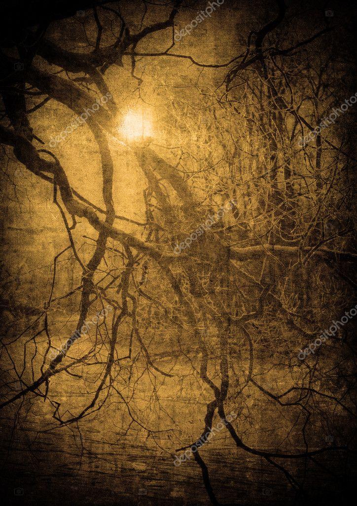 Фотообои Гранж изображение темного леса, идеальный Хэллоуин фон