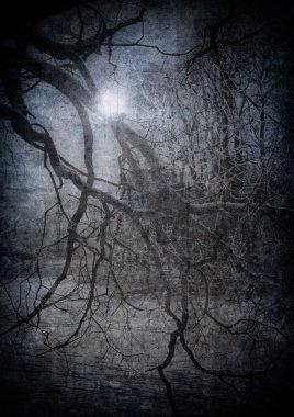 Grunge image of dark forest, perfect halloween background