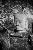 Photo Head of gate guardian, Angkor, Cambodia