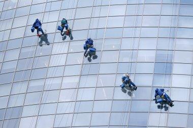 Five window cleaners