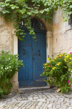 Old blue door and flowers in pots