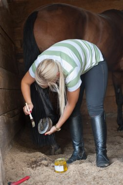 Cleans a hoof of horse