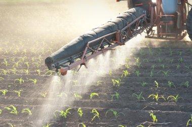 Tractor fertilizes crops