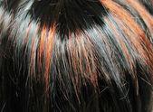 Zvýrazněte vlasy tmavě černé a sobě zázvorové textura pozadí