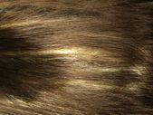 Dark zvýraznění vlasy textury pozadí