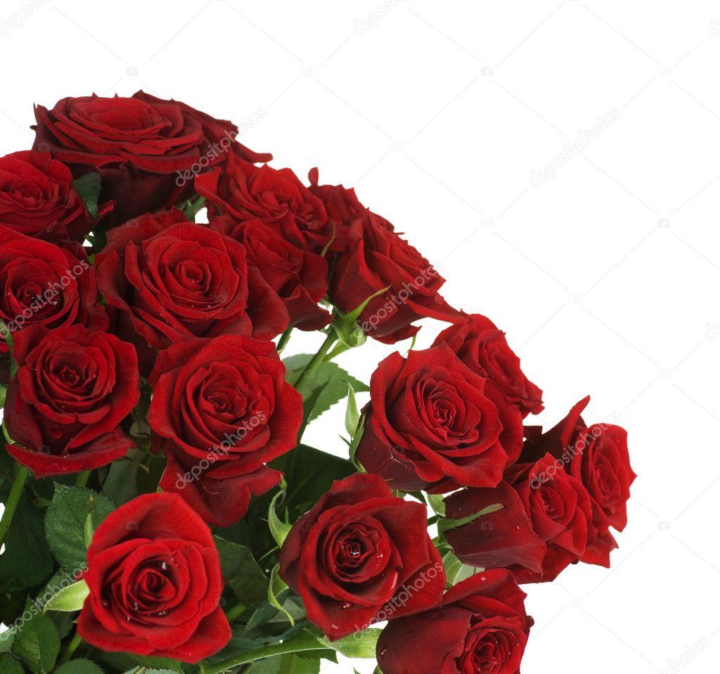 ramo de rosas rojas grandes foto de stock - Fotos De Rosas Rojas Grandes