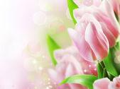tulipány jarní květinový design