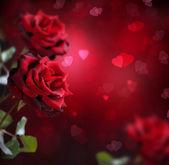 Fényképek Valentin vagy esküvői kártya rózsák és szívek