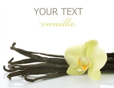 Vanilla Pods And Flower Over White