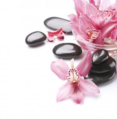Spa Stones and Orchid flowers over white