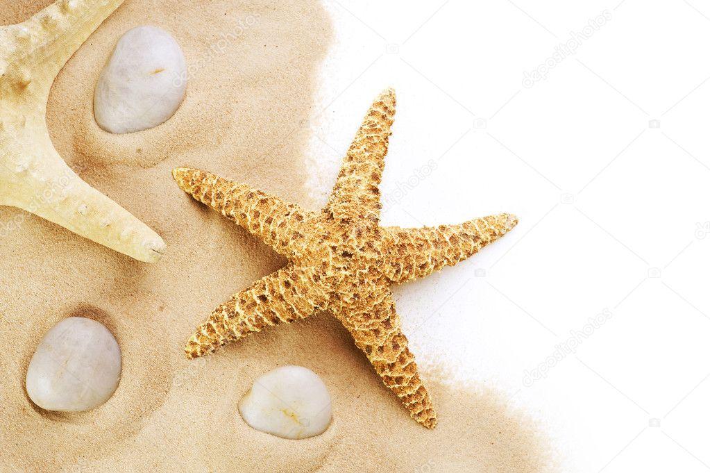 d3def4da0a57 Étoile de mer sur le sable de bordure design. isolé sur blanc. vacances —