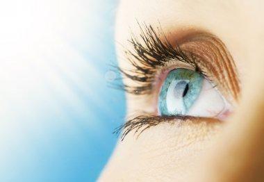 Beautiful Blue Eye stock vector