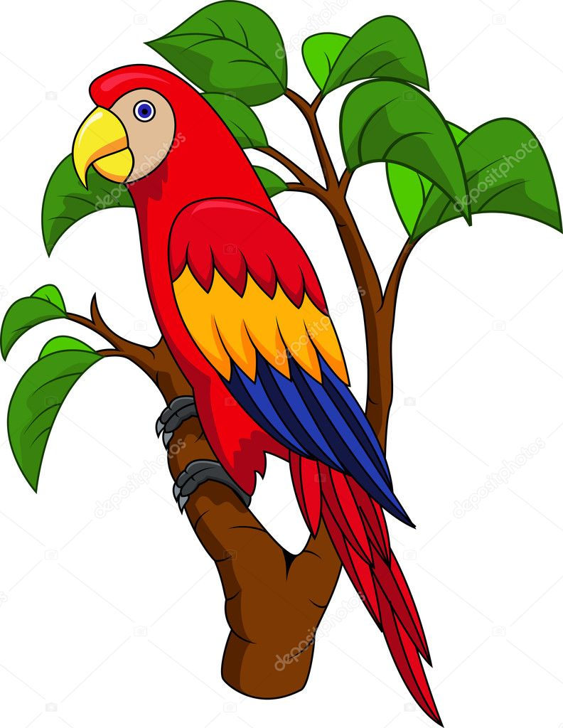 Populares desenho de pássaro arara — Vetor de Stock © idesign2000 #10349941 CO94